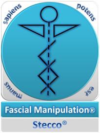 Manipulación Fascial - Metodo Stecco